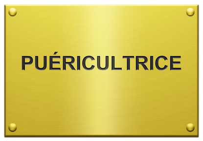 ipde-infirmier-puericulteur-puericultrice-hospitalier 1
